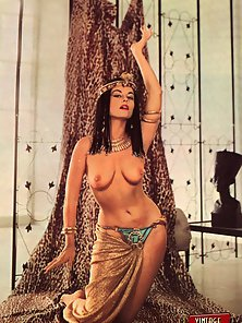 Vintage Beauty Reveals Her Pussy with Puffy Boobs Indoors