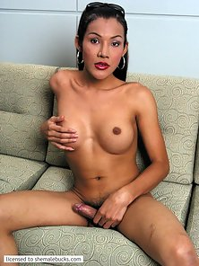 Sophisticated Thai transexual presents her big boner