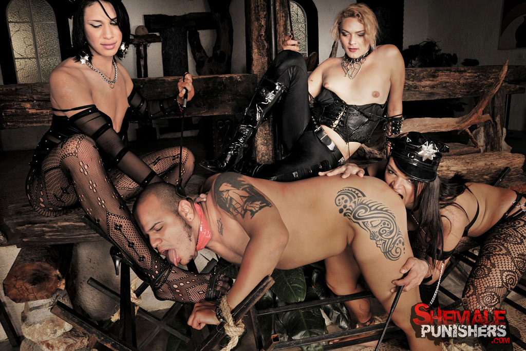 Shemale domination movies — 14
